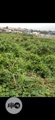 For Sale Cheapest Landed Property in Omole Phase 2 Ikeja at the Moment | Land & Plots For Sale for sale in Ikeja, Lagos State, Nigeria