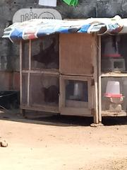 Chicken Cage | Pet's Accessories for sale in Lagos State, Lagos Mainland