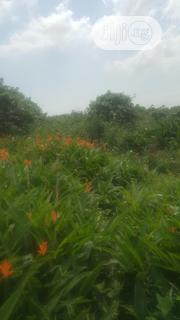 800sqm Of Land With C Of O Opebi Ikeja Lagos | Land & Plots For Sale for sale in Lagos State, Ikeja