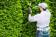 Do You Need A Gardner?   Recruitment Services for sale in Lagos State, Lagos Mainland