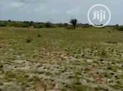 """21 Plots Of Land """"Native"""" Together Good For Estate,Schools Or Hospital 
