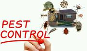 Fumigation And Pest Control Services | Cleaning Services for sale in Abuja (FCT) State, Gwarinpa