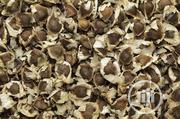 Wholesale Moringa Seed 1 KG Organic Moringa Seed   Feeds, Supplements & Seeds for sale in Plateau State, Jos