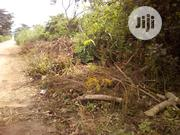 12 Acres At Atan Village Along Iseyin/Ibadan | Land & Plots For Sale for sale in Oyo State, Iseyin