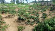 For Sale: One Plot Of Land @ Boskel, Port Harcourt | Land & Plots For Sale for sale in Rivers State, Obio-Akpor