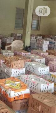 Day Old Chicks, Point Of Lay, Ducks, Turkey | Livestock & Poultry for sale in Oyo State, Ibadan