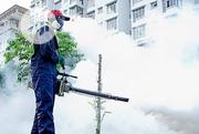 Smoke Fumigation For Rats | Cleaning Services for sale in Lagos State, Lekki Phase 2