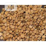 Ginger Seeds Organic Ginger Seeds | Feeds, Supplements & Seeds for sale in Plateau State, Jos South