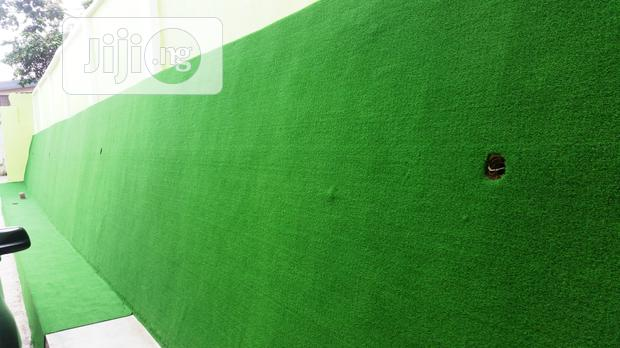 Synthetic Grass For Artificial Wall Design