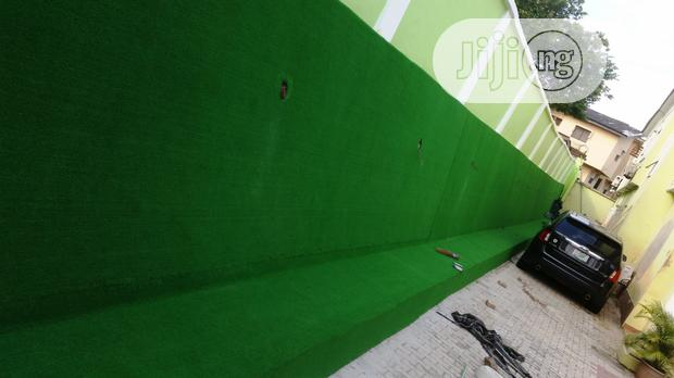 Artificial Grass For Wall Pattern Decoration And Design