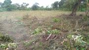 2 Acres at Okeseyin Village, Idi Ayunre Ibadan | Land & Plots For Sale for sale in Oyo State, Oluyole