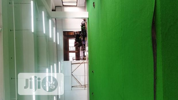 Artificial Grass Indoors For Decorative Lawn Use