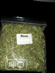 Alfalfa Herbs | Feeds, Supplements & Seeds for sale in Lagos State, Shomolu