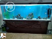 Aquarium Maintainance And Servicing | Pet's Accessories for sale in Lagos State, Ajah