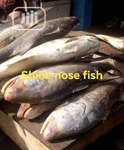 Fresh Fish. | Livestock & Poultry for sale in Lagos State, Lagos Mainland
