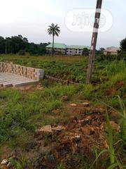 3 Plots Of Land In ANSU Igbariam For Sale | Land & Plots for Rent for sale in Anambra State, Oyi