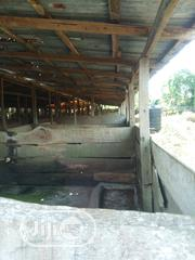 Piggery Farm For Sale's Or Lease | Livestock & Poultry for sale in Ogun State, Ijebu North