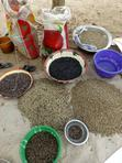 Mucuna Pruriens Seeds/ Velvet Beans | Feeds, Supplements & Seeds for sale in Kubwa, Abuja (FCT) State, Nigeria