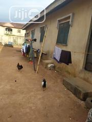 3 Bedroom Flat All Tiles Floor With 4 Nos Of Rooms And Parlor At Ipaja | Houses & Apartments For Sale for sale in Lagos State, Ipaja
