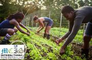 Agriculture And Farm Work Abroad | Travel Agents & Tours for sale in Edo State, Oredo