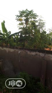 Two Plot At Aule And A Plot At Oda Road | Land & Plots For Sale for sale in Ondo State, Akure South