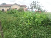 Plot Of Land 60by120   Land & Plots for Rent for sale in Ondo State, Akure