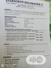 Office CV | Office CVs for sale in Oyo State, Ogbomosho South