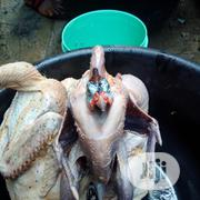 Fresh Meat | Meals & Drinks for sale in Lagos State, Ajah