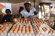 Fresh Eggs And Poultry Birds | Meals & Drinks for sale in Abuja (FCT) State, Maitama