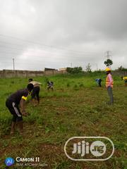 Gov Allocation | Land & Plots For Sale for sale in Lagos State, Lagos Mainland