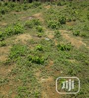 Standard Full Plot at Omi Apata | Land & Plots For Sale for sale in Oyo State, Ido
