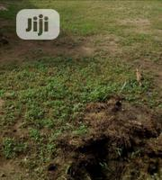 Distressed Sale of 1 Plot | Land & Plots For Sale for sale in Lagos State, Ifako-Ijaiye