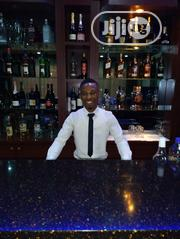 Hotel Receptionist | Hotel CVs for sale in Lagos State, Victoria Island