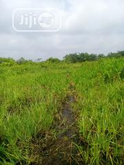 For Sale : Virgin Land For Sale At Isheri Osun At The Back Of 6th Ave | Land & Plots For Sale for sale in Lagos State, Alimosho