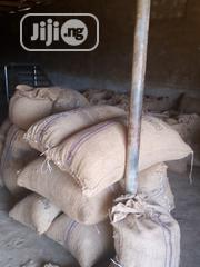 Cocoa Bean | Feeds, Supplements & Seeds for sale in Osun State, Osogbo