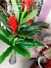 Artificial Plant | Garden for sale in Lagos State, Surulere