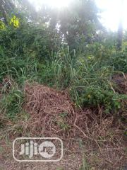 Very Cheap Genuine 100x100ft Almost on the Tarred Road 4 Urgent Sale | Land & Plots For Sale for sale in Edo State, Benin City
