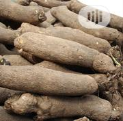 Yams For Sell, | Feeds, Supplements & Seeds for sale in Delta State, Warri South