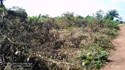 A Plot Of Land With A Family Conveyance   Land & Plots For Sale for sale in Lagos State, Ikorodu