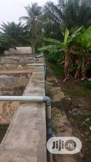 Fish Farm, House And Land For Sale   Commercial Property For Sale for sale in Lagos State, Badagry