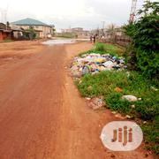 2 Plots Of Land At Peace Estate Baruwa With C Of O | Land & Plots For Sale for sale in Lagos State, Alimosho