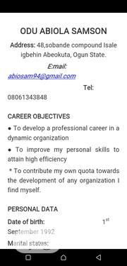 Private Driver | Driver CVs for sale in Lagos State, Lagos Island
