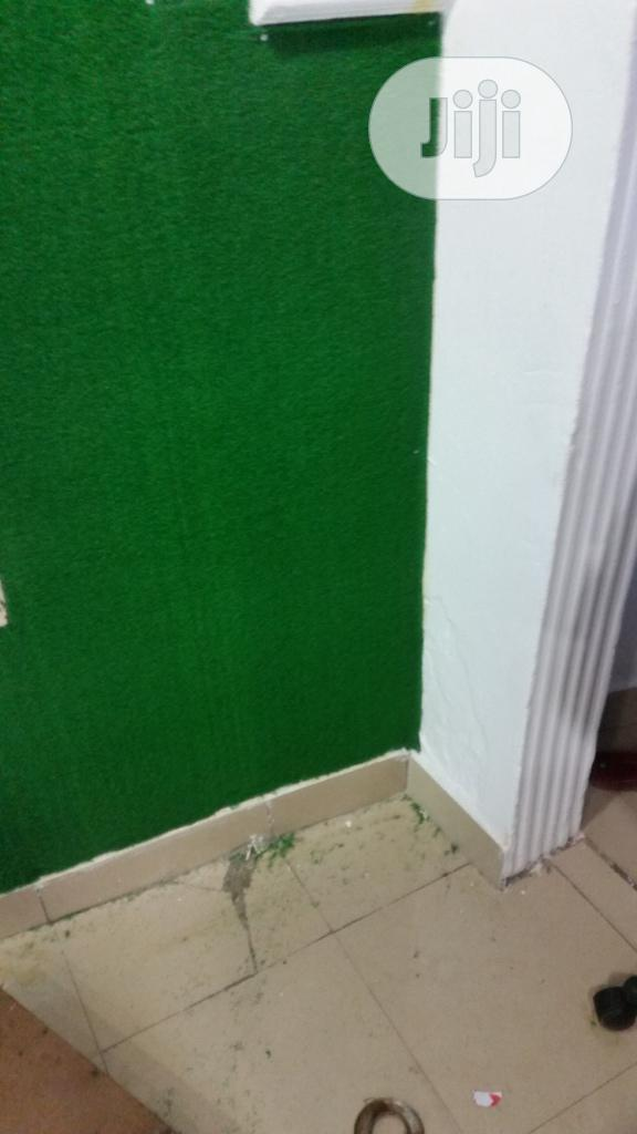 Artificial Grass For Wall In Nigeria