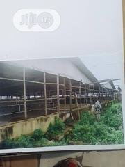 Complete Farm For Sale. | Commercial Property For Sale for sale in Lagos State, Badagry