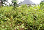 2 Plots of Land 4 Sale. | Land & Plots For Sale for sale in Rivers State, Ikwerre
