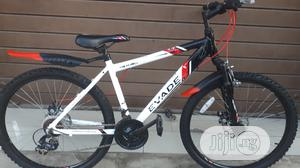 Adult Bicycle Size 26