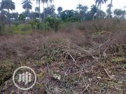 4 Plots Of Land For Sale | Land & Plots For Sale for sale in Edo State, Uhunmwonde