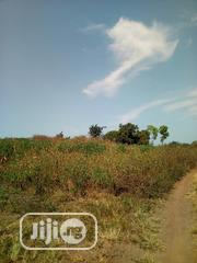 A Genieu &Realiable Acr Of Land Is Available For Sale | Land & Plots For Sale for sale in Oyo State, Ibadan