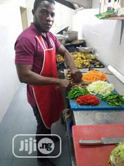 Professional Chef and Cooking Applicant | Restaurant & Bar CVs for sale in Lagos State, Lagos Island