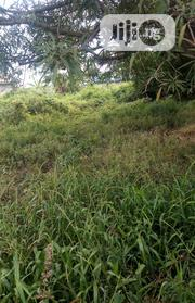 Plot of Land | Land & Plots For Sale for sale in Oyo State, Surulere-Oyo